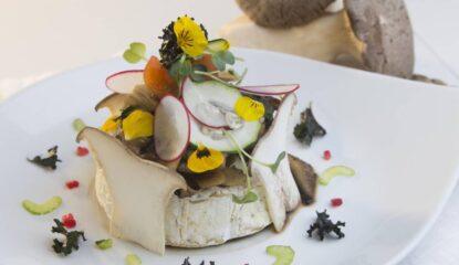 presentacion camembert al horno