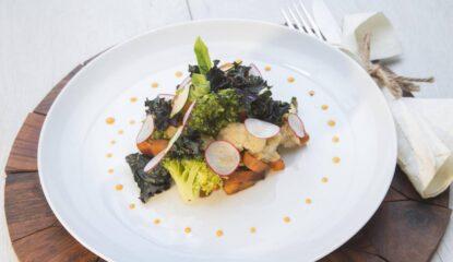 presentacion wok de hortalistas