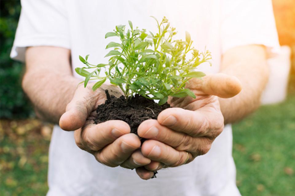 Tu alimentación puede ayudar al medio ambiente