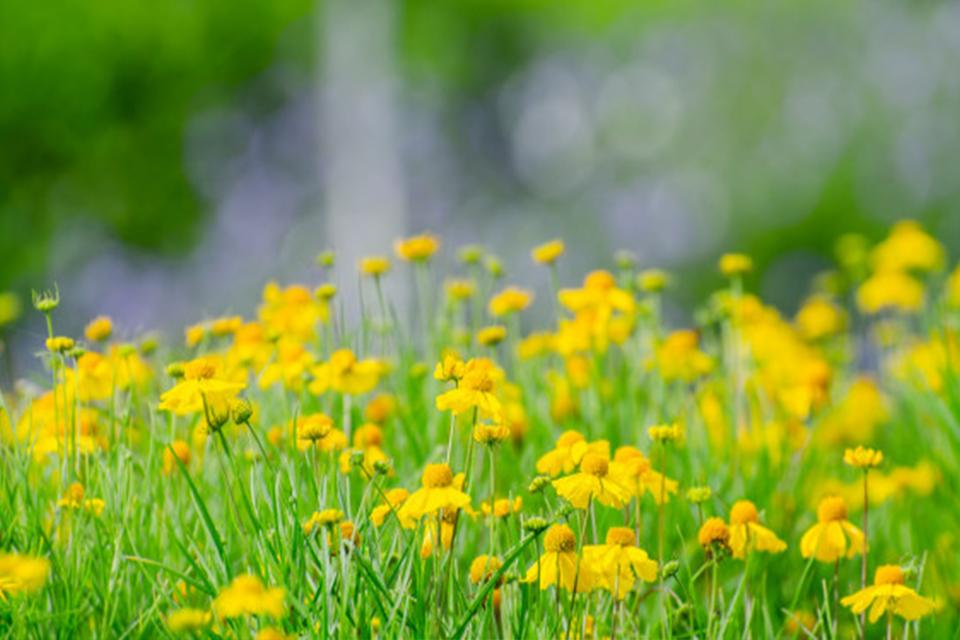 Malos hábitos que debemos mejorar en primavera