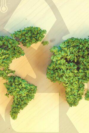 6. Creemos en la internacionalización.