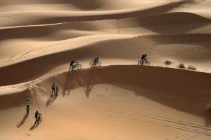 Primaflor titan desert